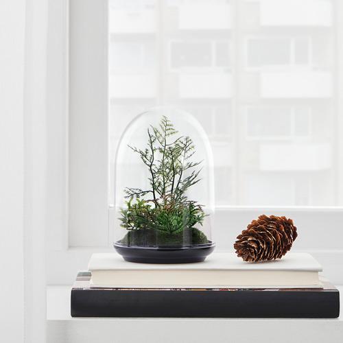 INVÄNDIG terrario artificial campana
