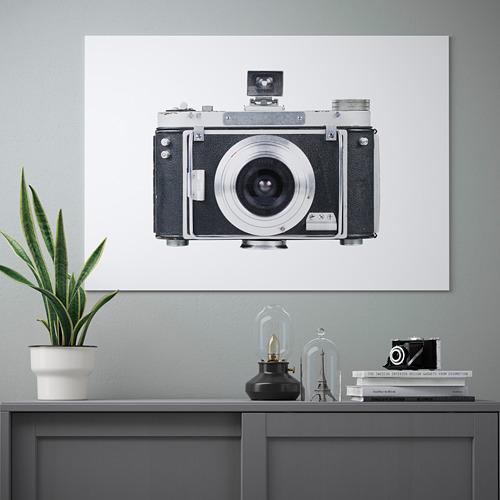 PJÄTTERYD cuadro, 100x70cm