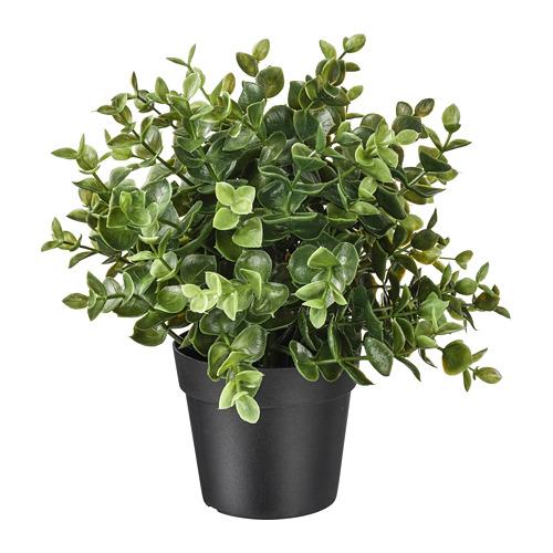 FEJKA planta artificial