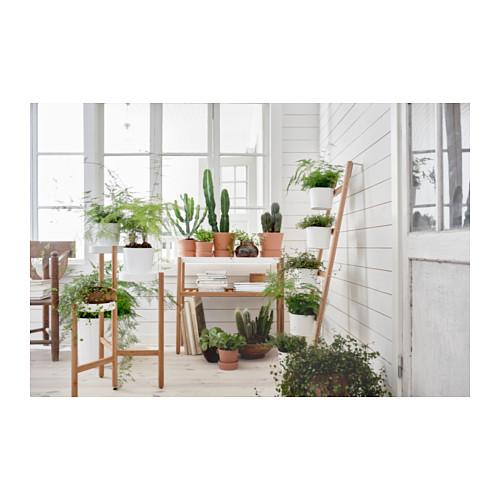 SATSUMAS soporte p/plantas