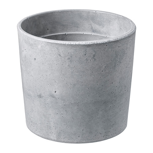 BOYSENBÄR Macetero, diámetro máximo maceta, 12 cm