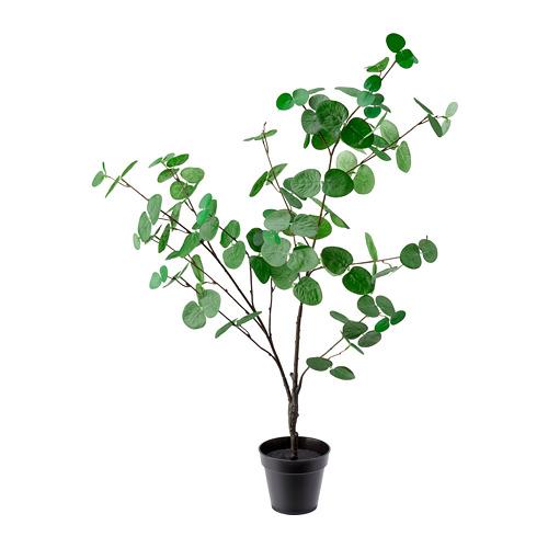 FEJKA planta artificial con maceta, 12cm de diámetro